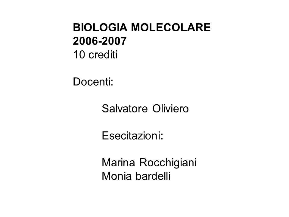 BIOLOGIA MOLECOLARE 2006-2007. 10 crediti. Docenti: Salvatore Oliviero. Esecitazioni: Marina Rocchigiani.