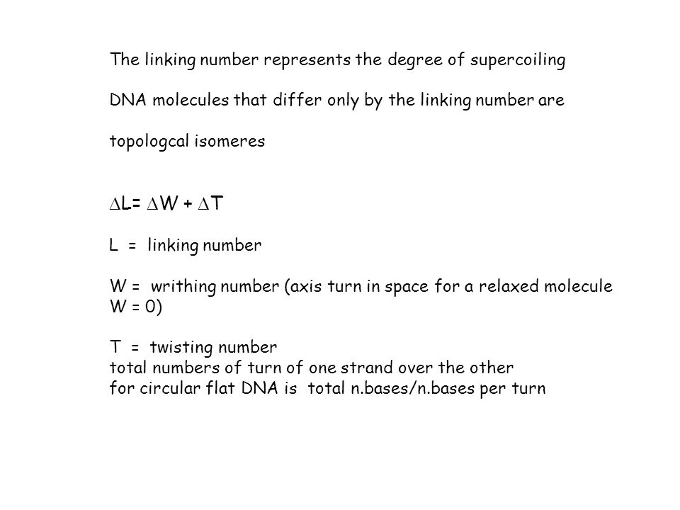 DL= DW + DT The linking number represents the degree of supercoiling
