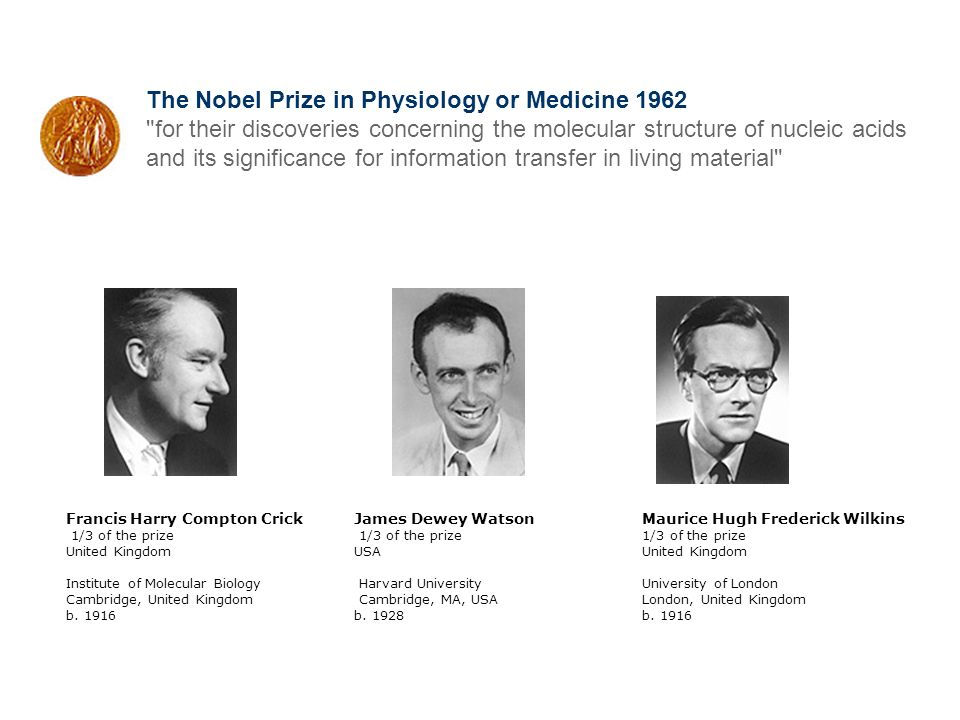 The Nobel Prize in Physiology or Medicine 1962