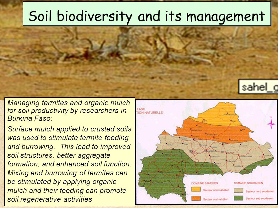 the important elements in soil and land management Play an important role in influencing but must the important elements in soil and land elements in soil and land management free software unlimited.