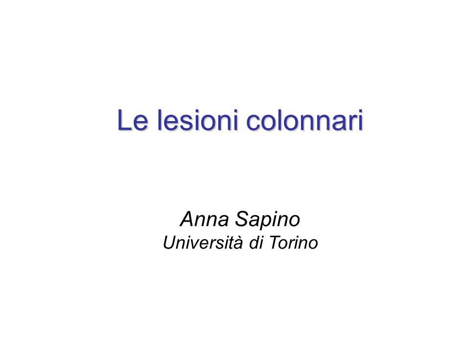 Le lesioni colonnari Anna Sapino Università di Torino