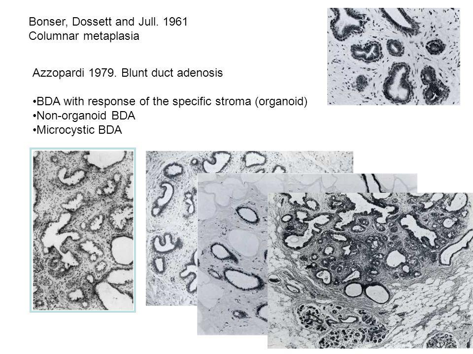 Bonser, Dossett and Jull. 1961