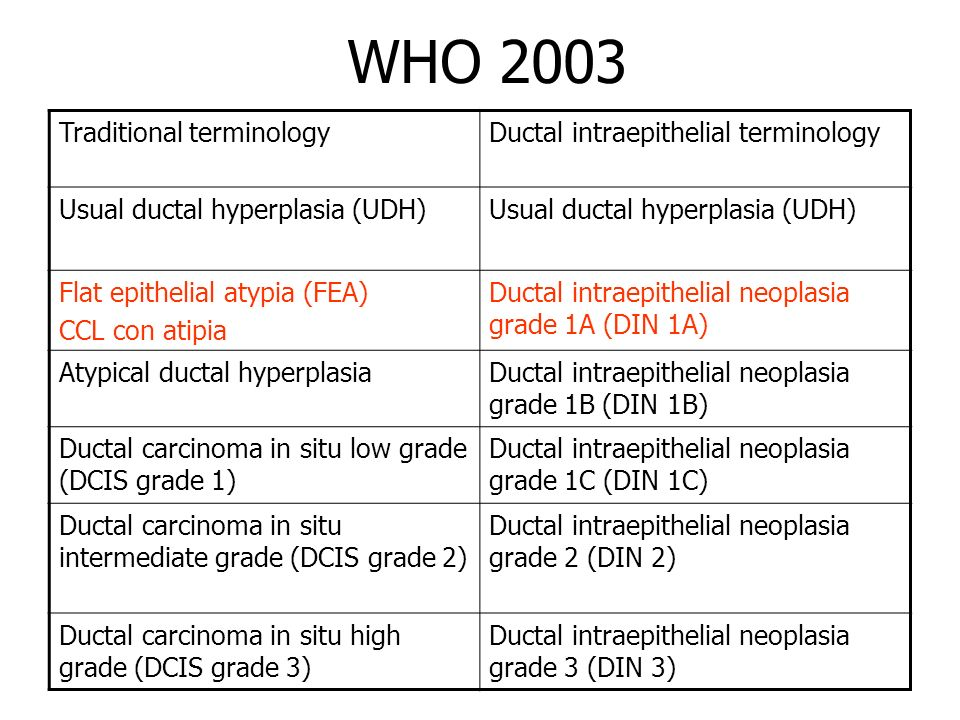 WHO 2003 Traditional terminology Ductal intraepithelial terminology