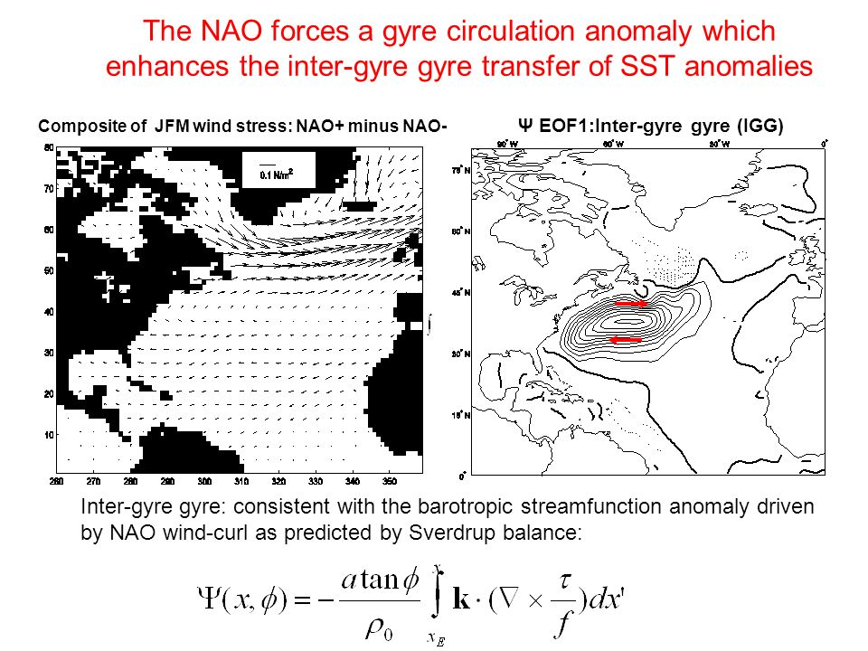 The NAO forces a gyre circulation anomaly which enhances the inter-gyre gyre transfer of SST anomalies