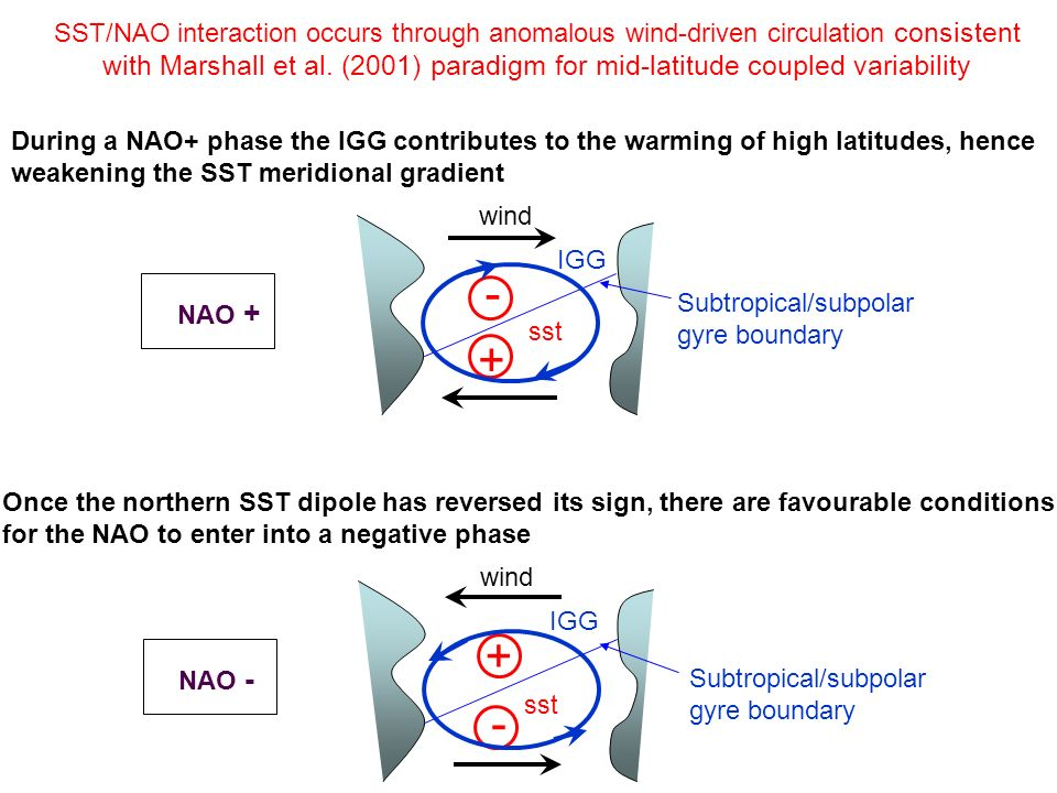 SST/NAO interaction occurs through anomalous wind-driven circulation consistent