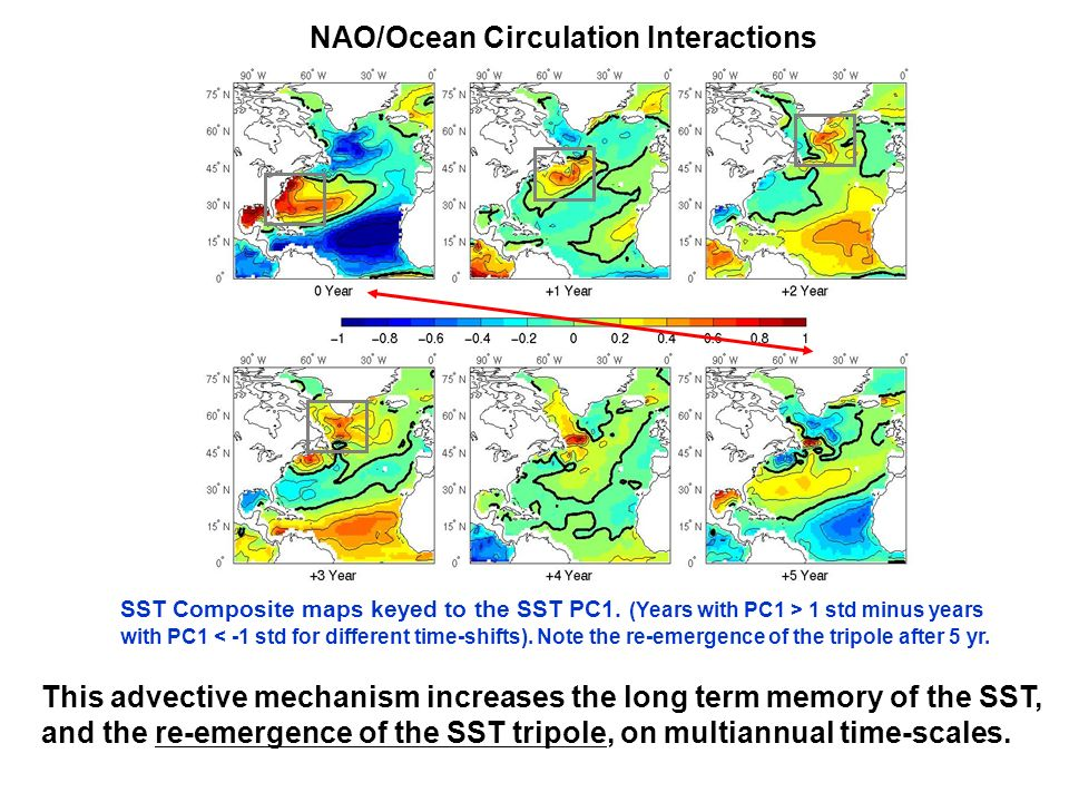 NAO/Ocean Circulation Interactions
