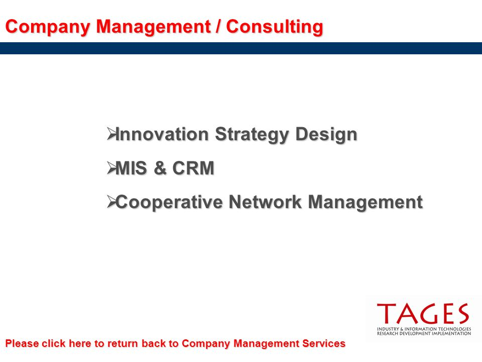 Company Management / Consulting