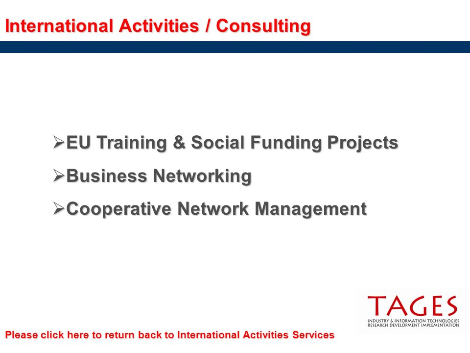 International Activities / Consulting