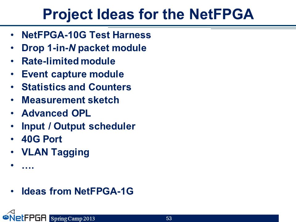 Project Ideas for the NetFPGA