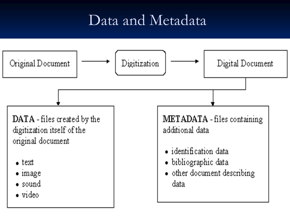 Data and Metadata