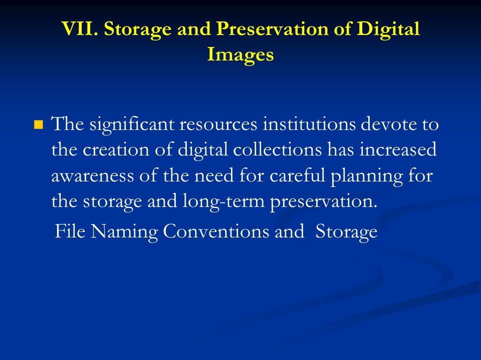 VII. Storage and Preservation of Digital Images