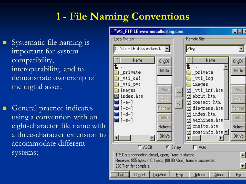 1 - File Naming Conventions