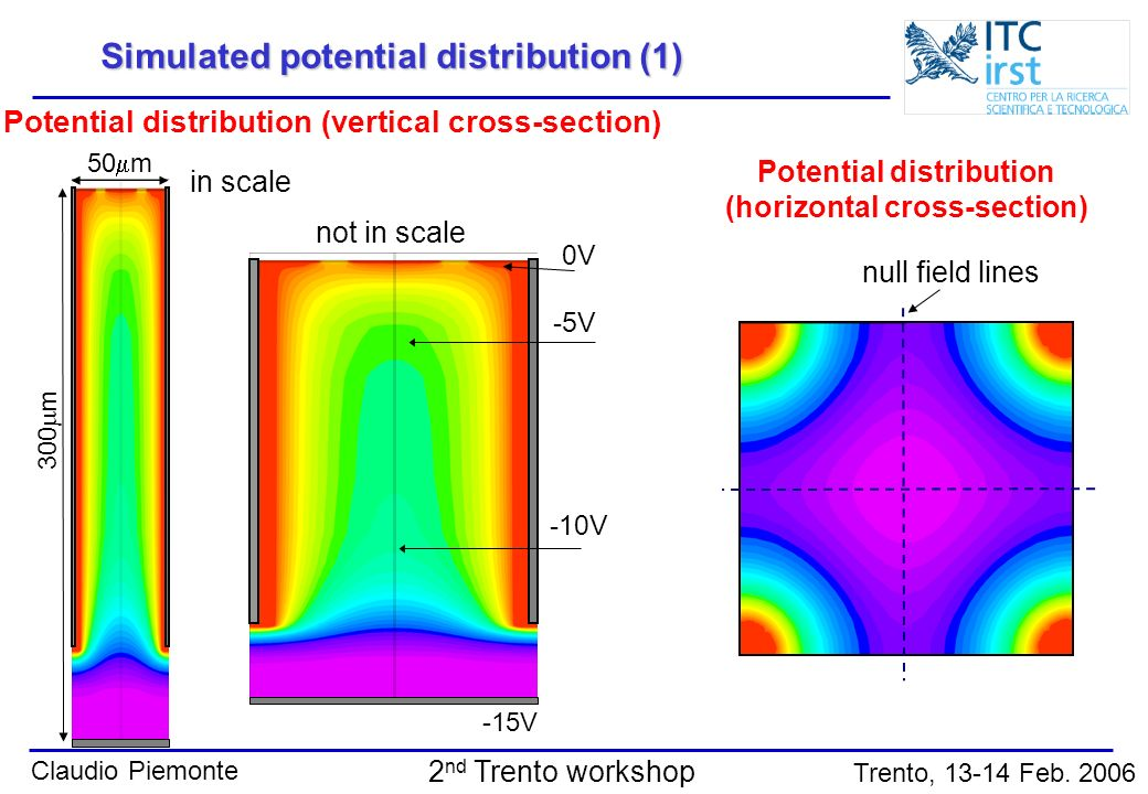 Simulated potential distribution (1)