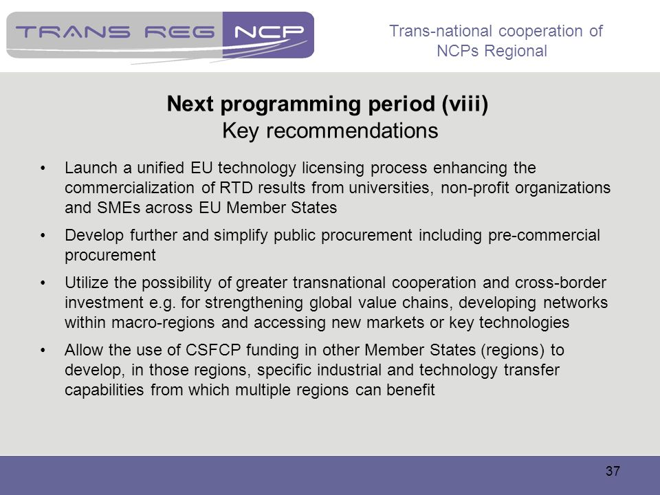 Next programming period (viii) Key recommendations