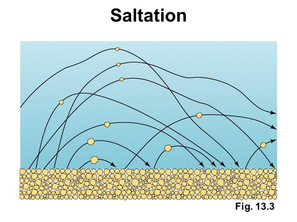 Saltation Fig. 13.3