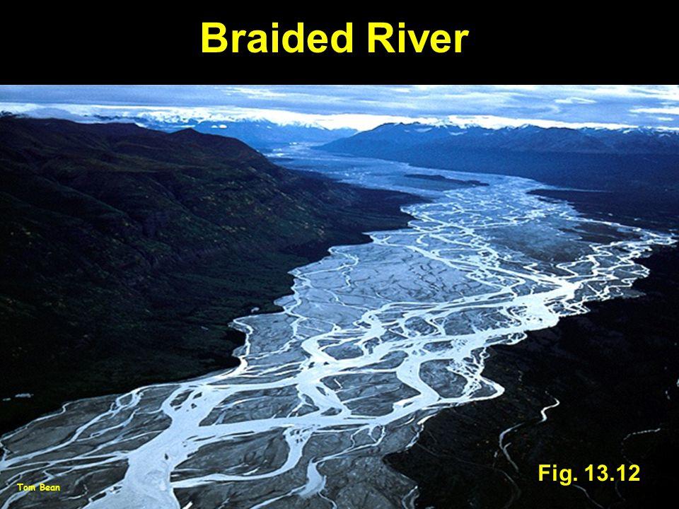 Braided River Fig. 13.12 Tom Bean