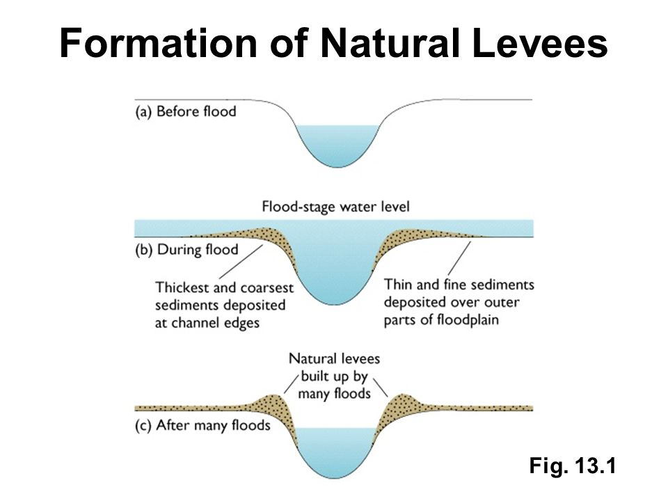 Formation of Natural Levees