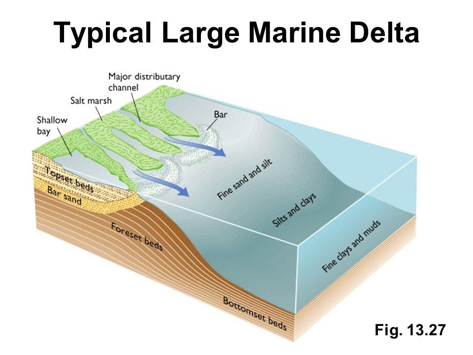 Typical Large Marine Delta