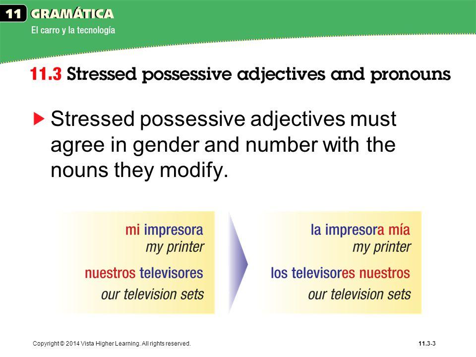 Spanish Grammar Possessive Adjectives and Noun Agreement 9666502 ...