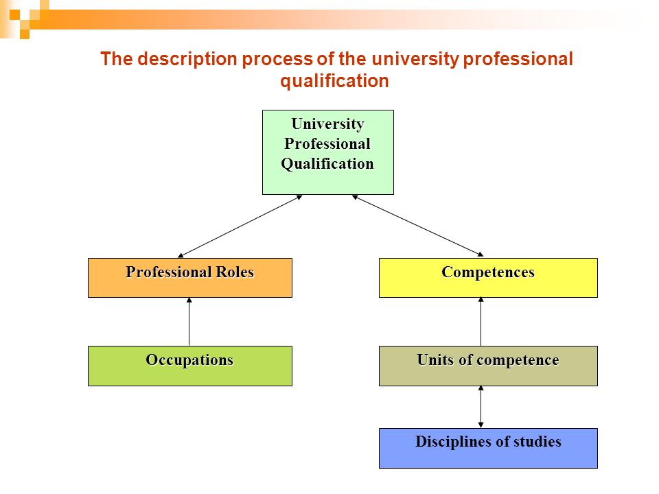 The description process of the university professional qualification