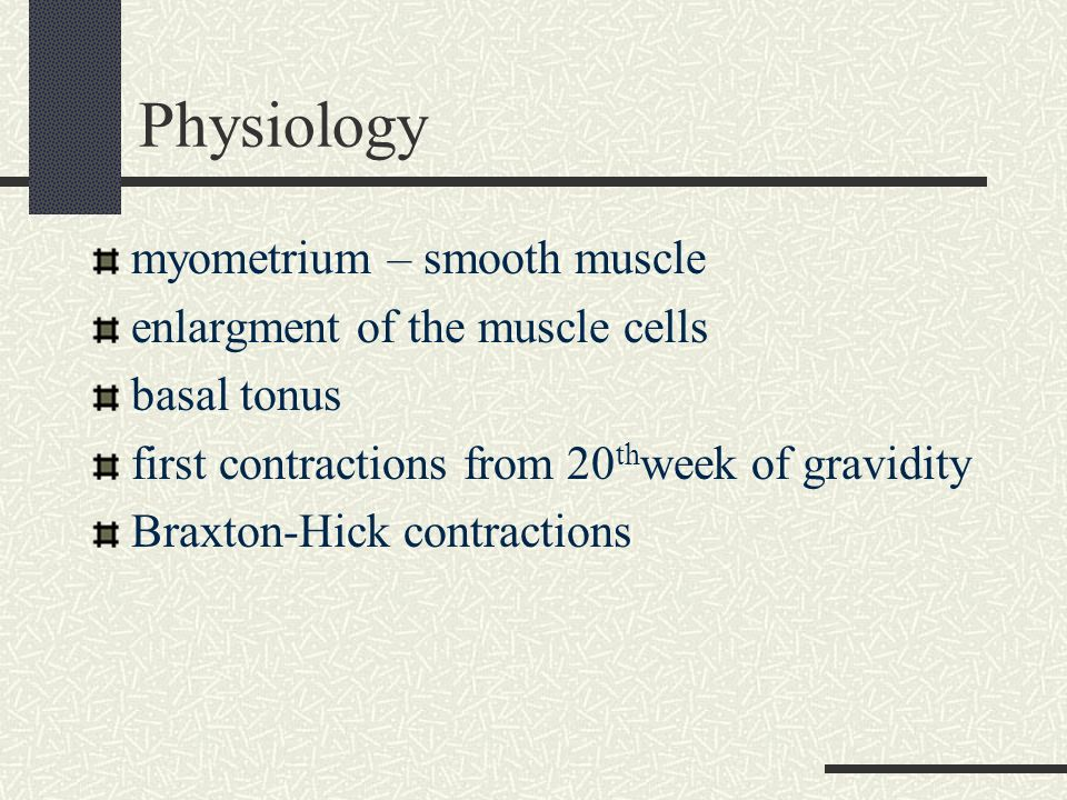 Physiology myometrium – smooth muscle enlargment of the muscle cells