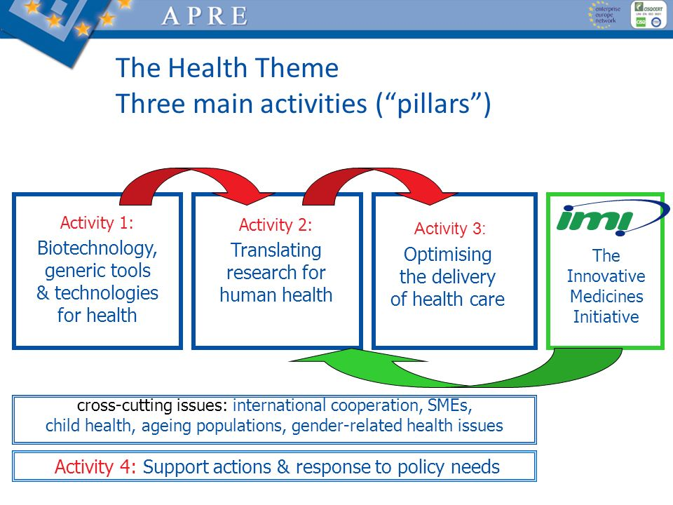 The Health Theme Three main activities ( pillars )