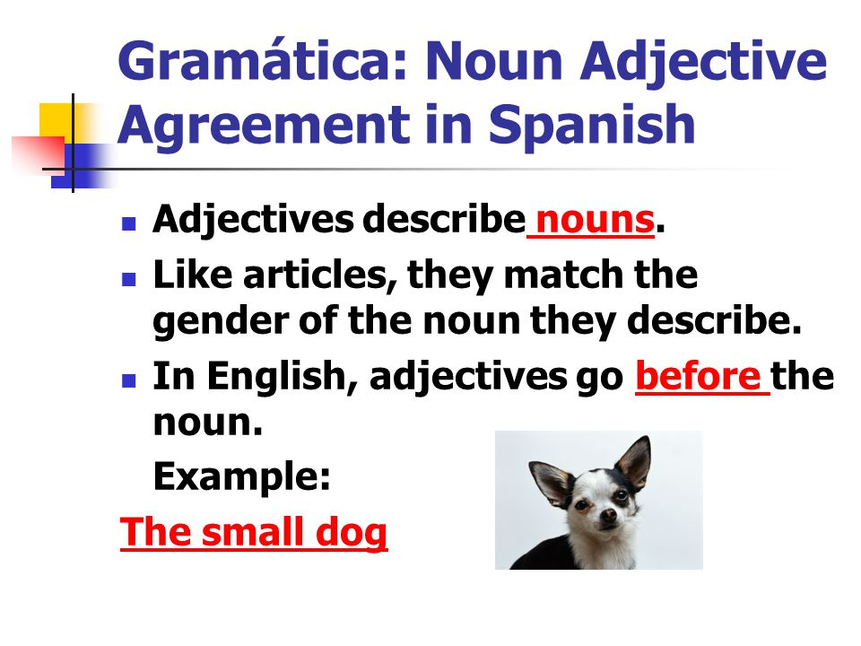 Gramtica noun adjective agreement in spanish ppt video online gramtica noun adjective agreement in spanish platinumwayz