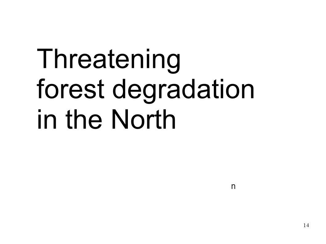 Threatening forest degradation in the North n