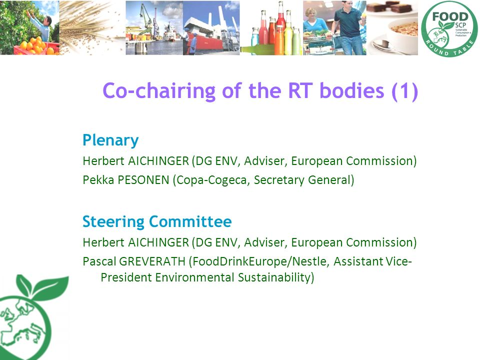 Co-chairing of the RT bodies (1)