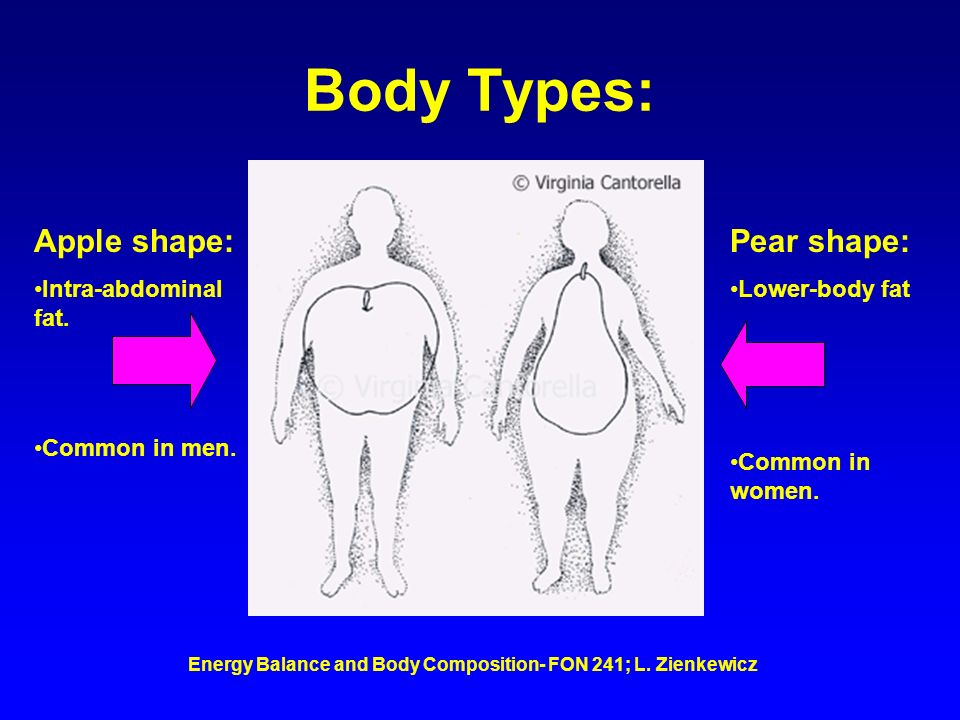 Energy Balance and Body Composition- FON 241; L. Zienkewicz