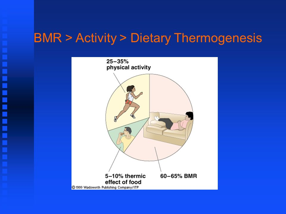 BMR > Activity > Dietary Thermogenesis