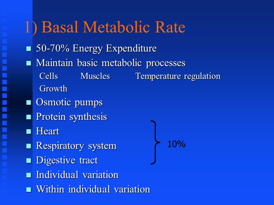 1) Basal Metabolic Rate 50-70% Energy Expenditure
