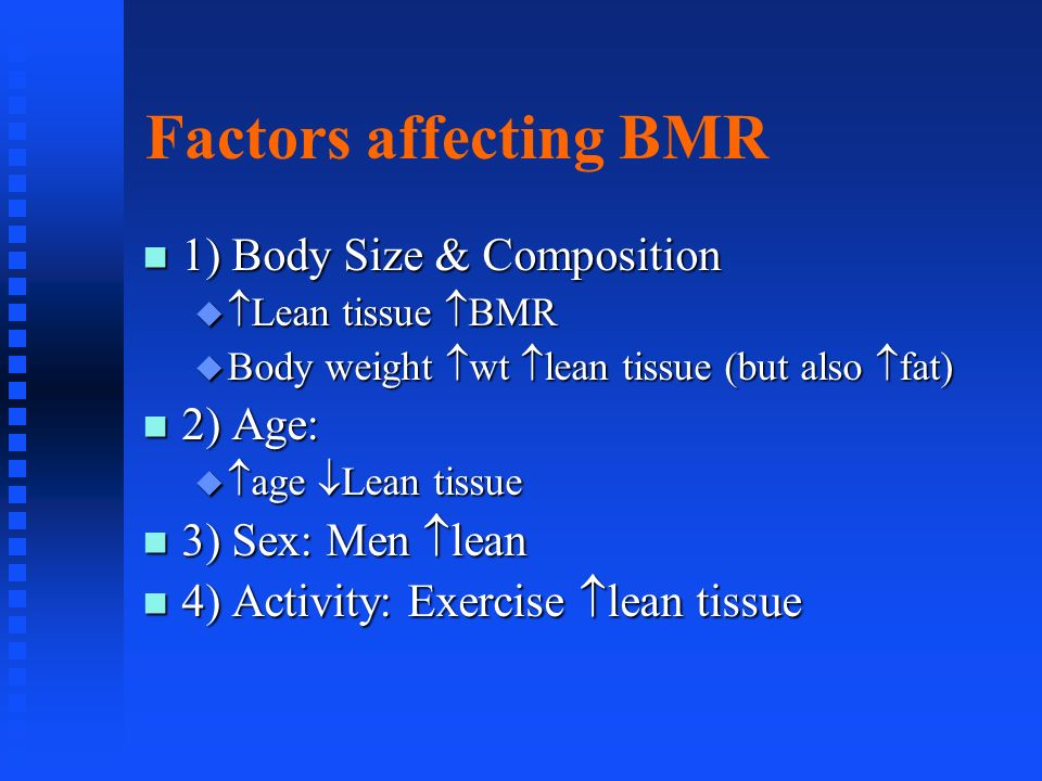 Factors affecting BMR 1) Body Size & Composition 2) Age: