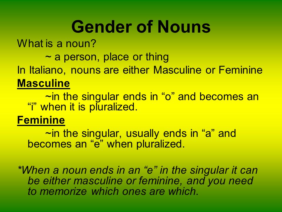 Gender of Nouns What is a noun ~ a person, place or thing