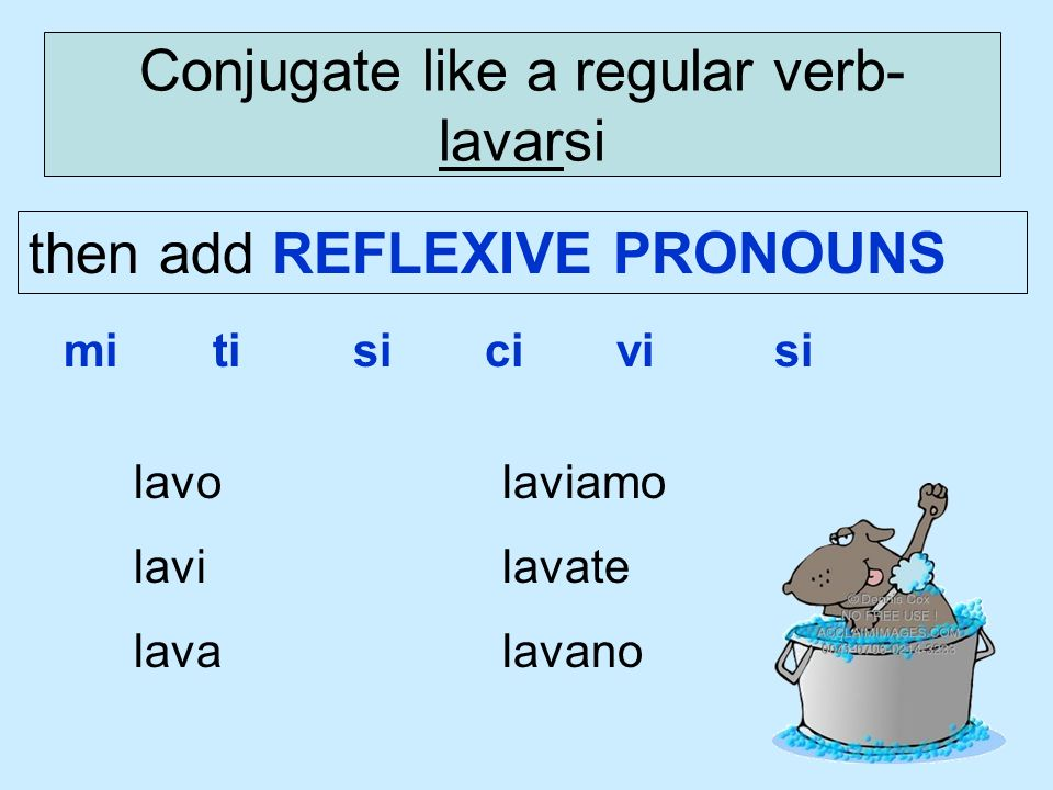 Conjugate like a regular verb- lavarsi