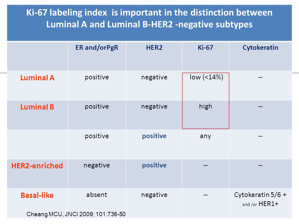 Ki-67 labeling index is important in the distinction between Luminal A and Luminal B-HER2 -negative subtypes