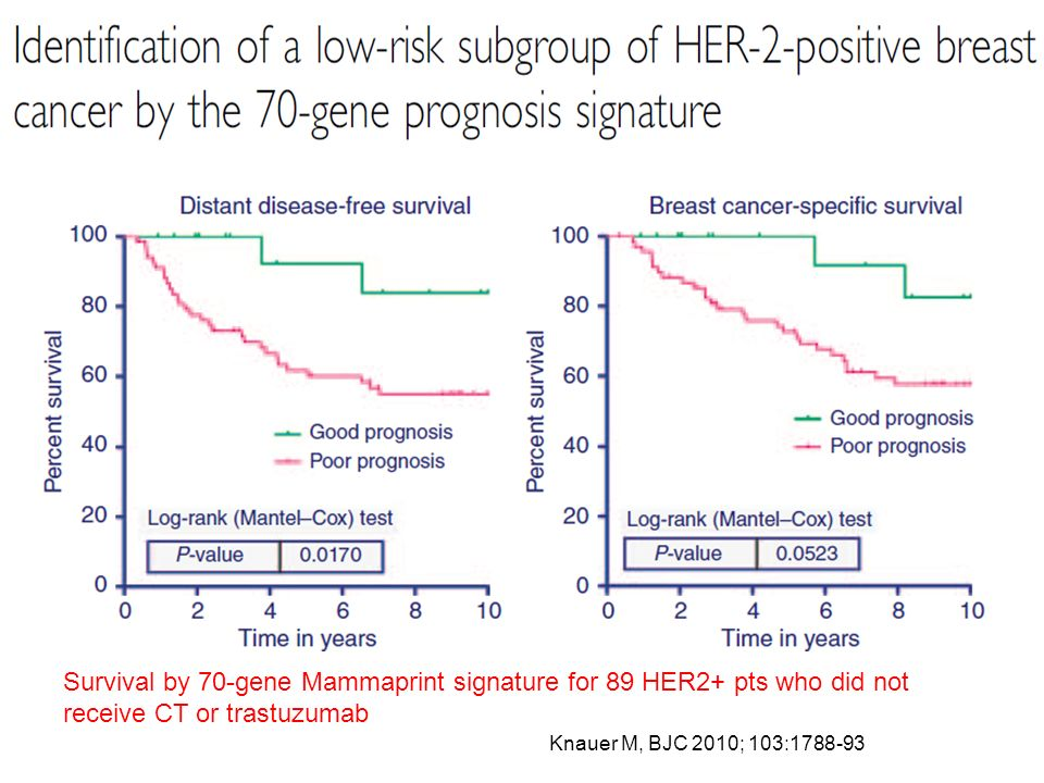 Survival by 70-gene Mammaprint signature for 89 HER2+ pts who did not receive CT or trastuzumab