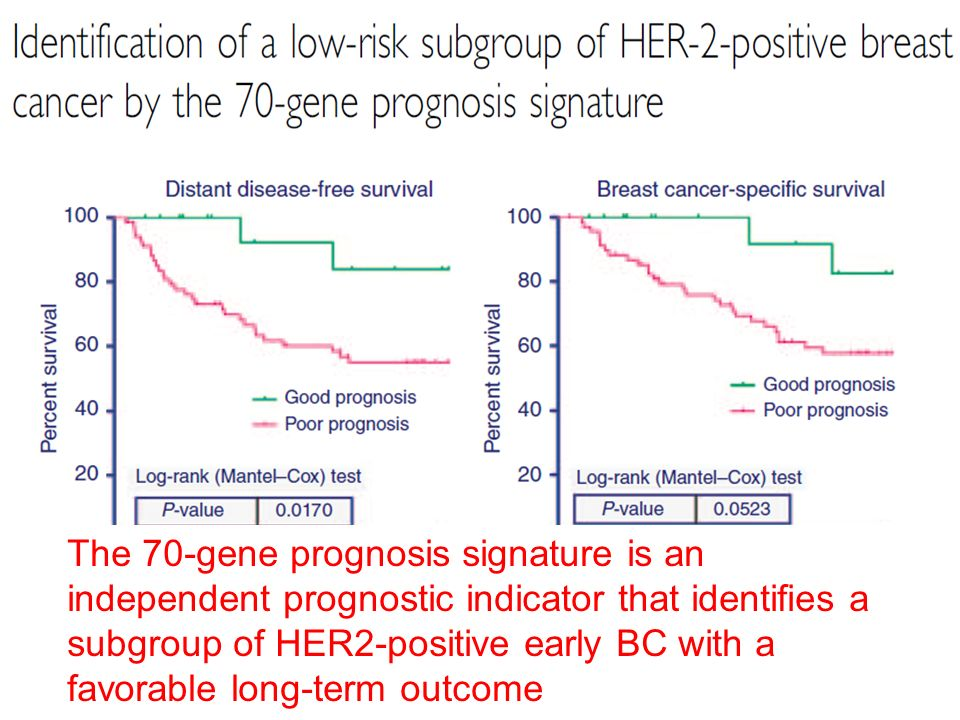 The 70-gene prognosis signature is an independent prognostic indicator that identifies a subgroup of HER2-positive early BC with a favorable long-term outcome