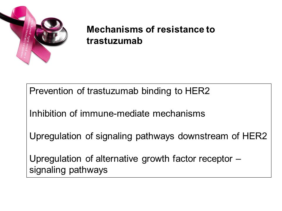 Mechanisms of resistance to trastuzumab