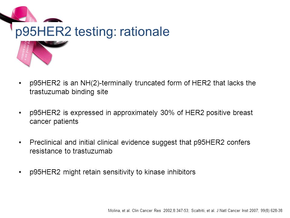 p95HER2 testing: rationale