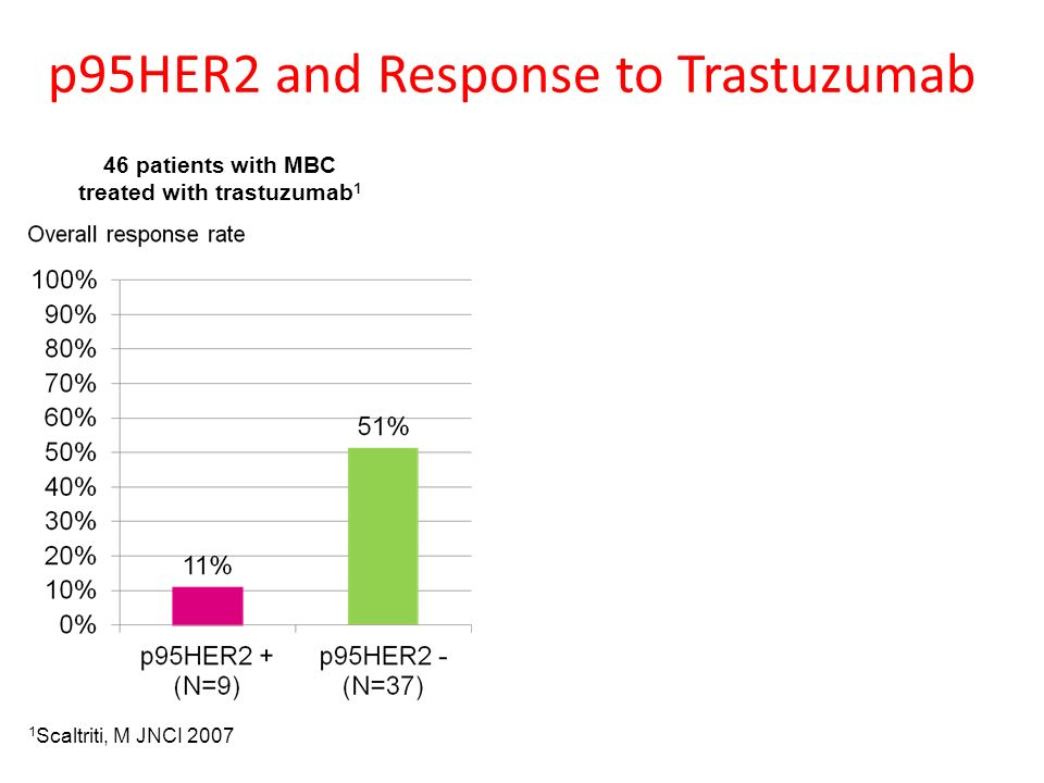 p95HER2 and Response to Trastuzumab