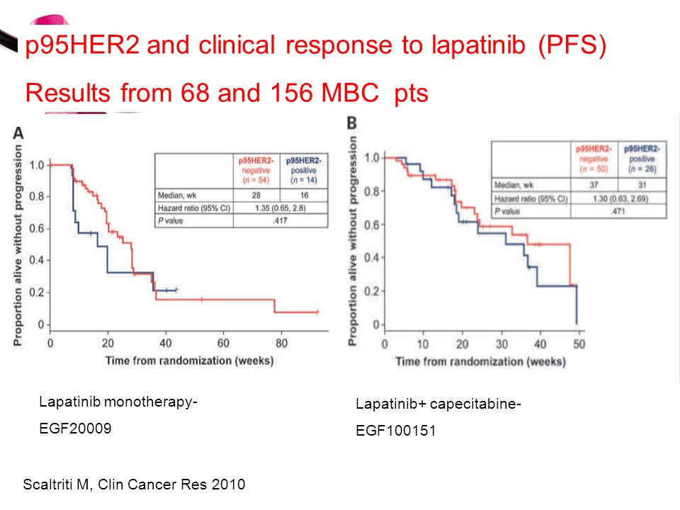 p95HER2 and clinical response to lapatinib (PFS)