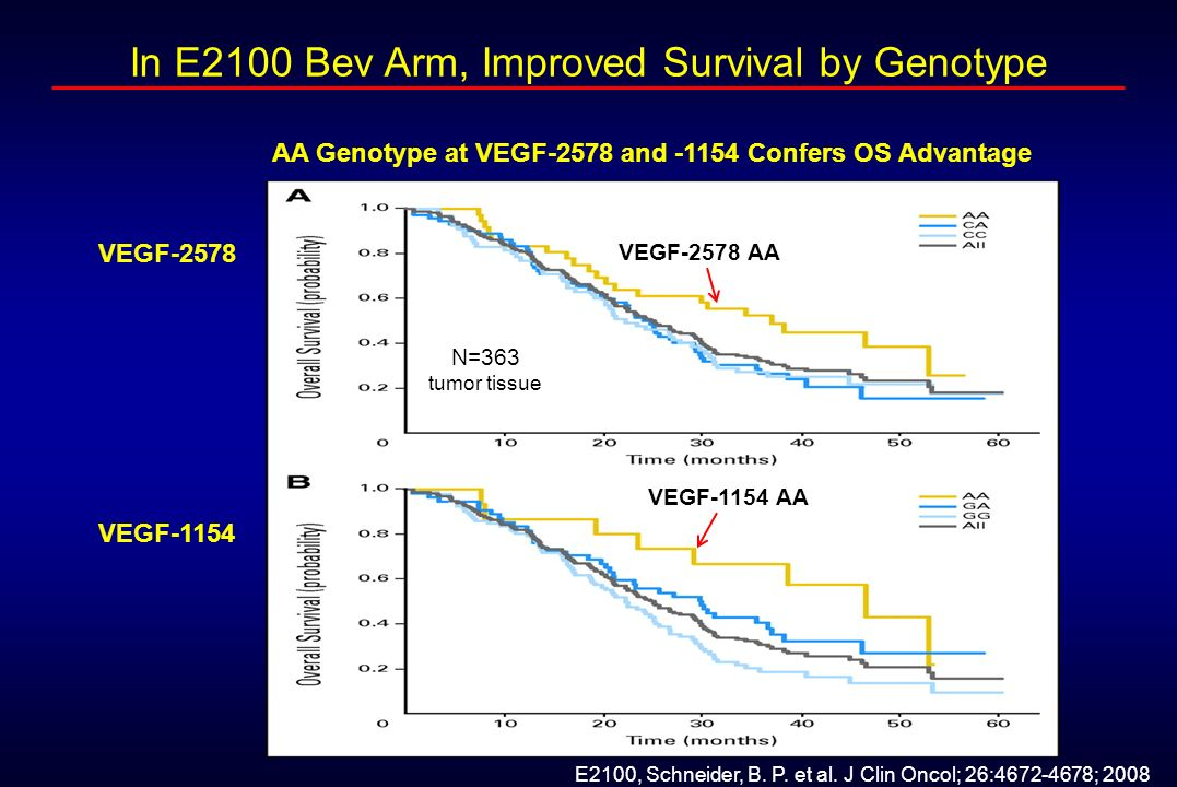 AA Genotype at VEGF-2578 and -1154 Confers OS Advantage
