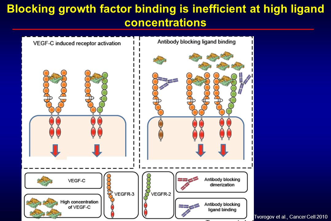 Blocking growth factor binding is inefficient at high ligand concentrations