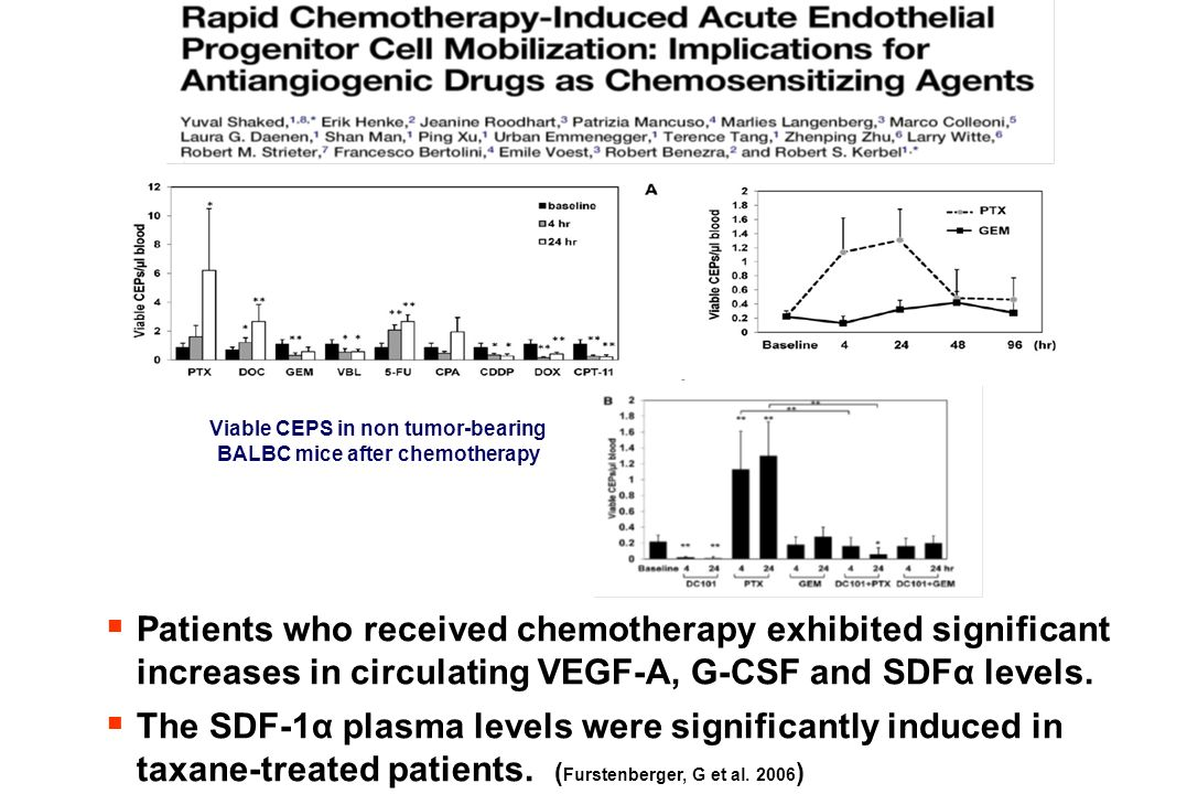 Viable CEPS in non tumor-bearing BALBC mice after chemotherapy