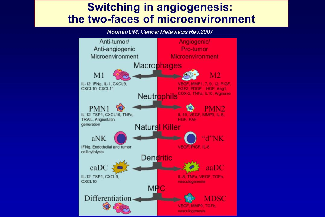 Switching in angiogenesis: the two-faces of microenvironment
