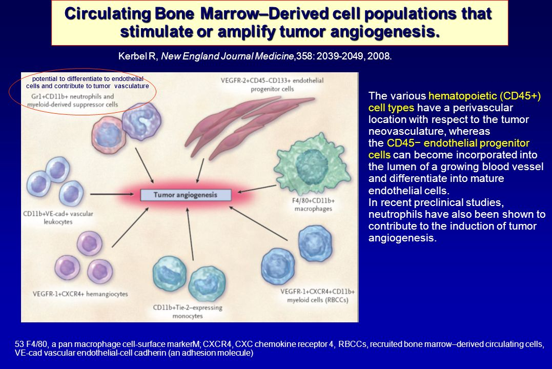 Circulating Bone Marrow–Derived cell populations that
