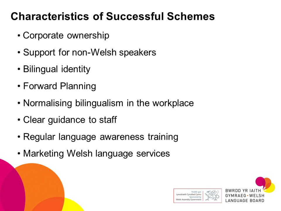 Characteristics of Successful Schemes