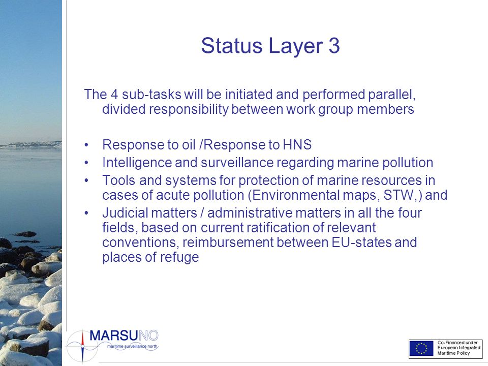 Status Layer 3 The 4 sub-tasks will be initiated and performed parallel, divided responsibility between work group members.