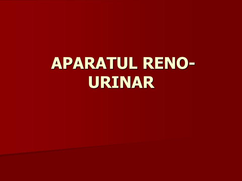 APARATUL RENO-URINAR